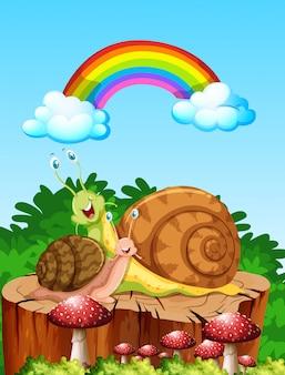Dos caracoles que viven en la escena del jardín durante el día con arco iris