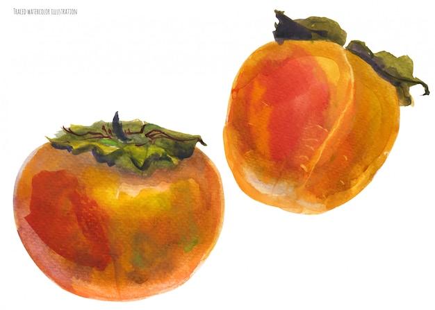 Dos frutas naranjas de caqui