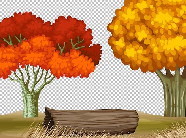 Dos grandes árboles en otoño escena transparente.