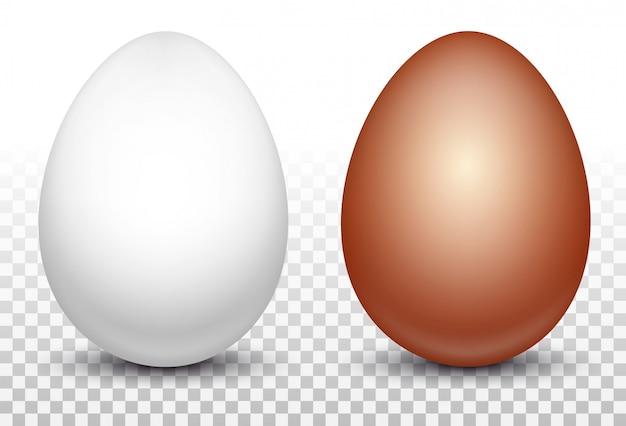 Dos huevos de gallina blanca y roja.