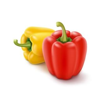 Dos pimientos búlgaros amarillos y rojos