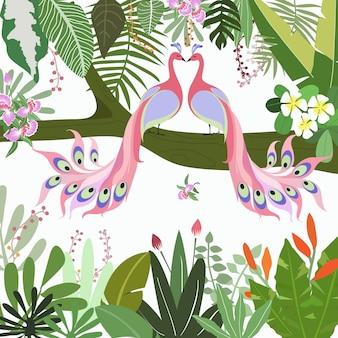 Dulce pareja de pavo real en el bosque tropical.