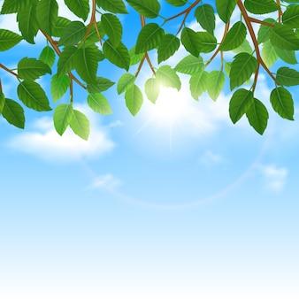 Eco del mundo de la naturaleza estilo de vida amigable hojas verdes y cielo fondo frontera cartel