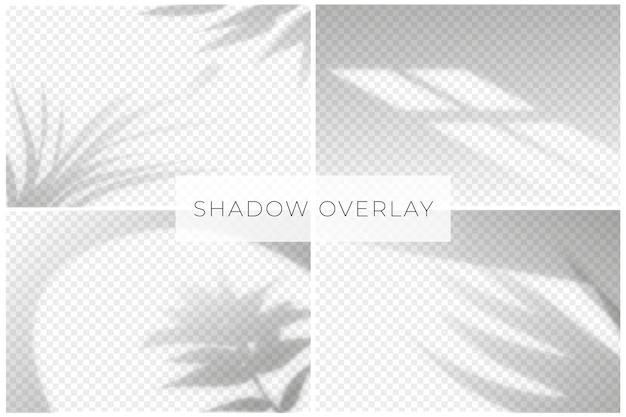 Efecto de superposición de sombras con fondo transparente