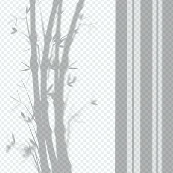 Efecto de superposición de sombras de plantas transparentes