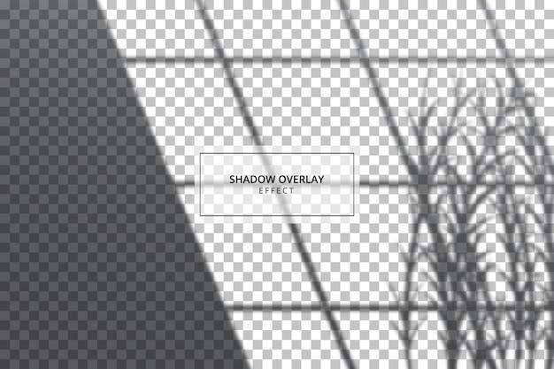 Efecto de superposición de sombras sobre fondo transparente