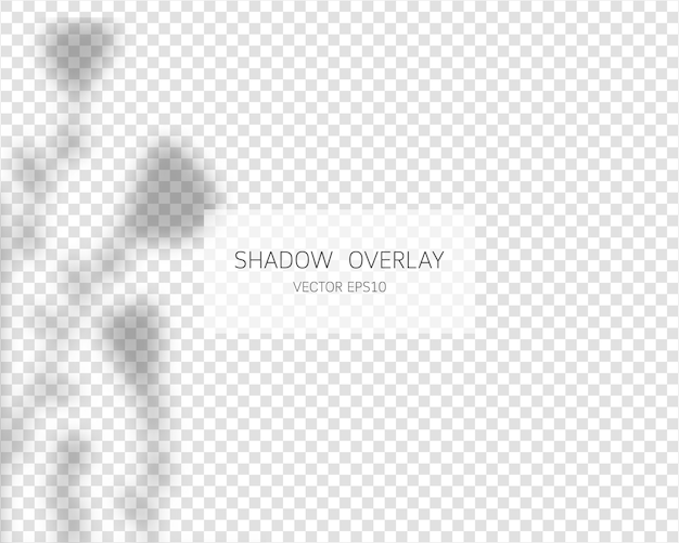 Efecto de superposición de sombras. sombras naturales aisladas sobre fondo transparente. .