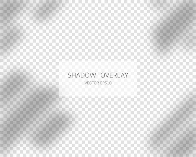 Efecto de superposición de sombras sombras naturales de la ventana aislada sobre fondo transparente
