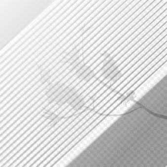 Efecto de superposición de sombras transparentes con rama