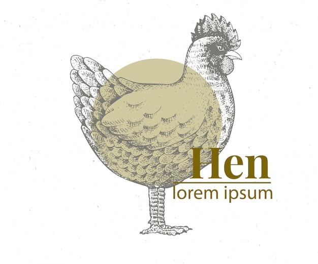 Ejemplo dibujado mano del pollo del vector