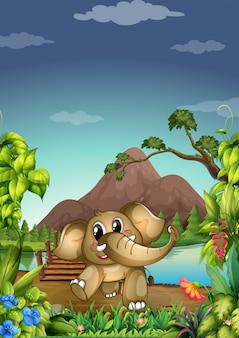 Elefante en el bosque