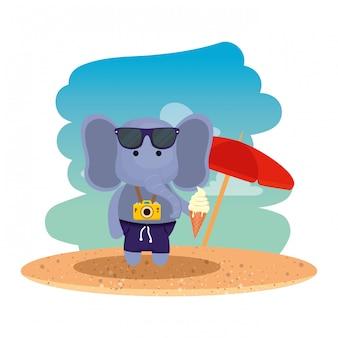 Elefante con cámara fotográfica y helado en la playa.
