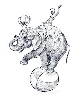 Elefante de circo animal salvaje africano en la pelota. mostrar en el zoológico. boceto grabado dibujado a mano en estilo vintage.