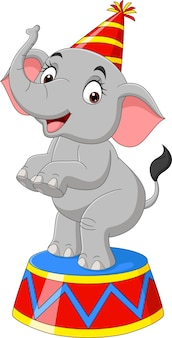 Elefante de circo divertido de dibujos animados de pie