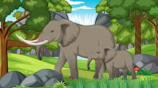 Elefante en escena de bosque o selva tropical con muchos árboles