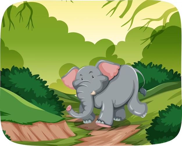 Elefante feliz en la escena de la selva