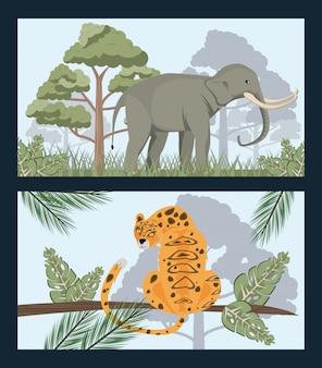 Elefante salvaje y leopardo en la escena de la naturaleza salvaje de la selva