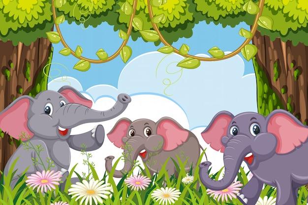 Elefantes en escena de la jungla