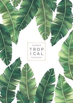 Elegante fondo tropical con hermosas hojas