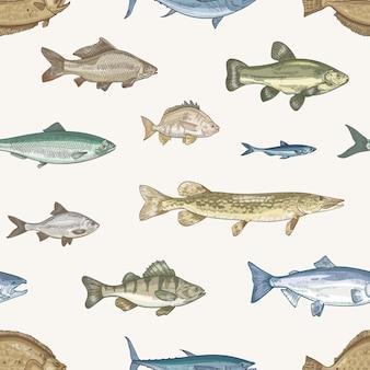 Elegante patrón sin costuras con diferentes tipos de peces a la luz.