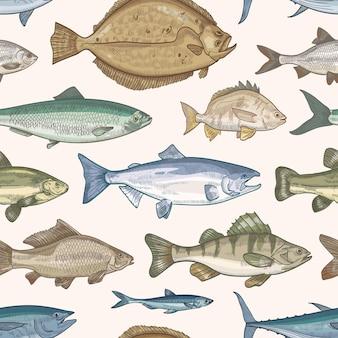 Elegante patrón sin costuras con diferentes tipos de peces.