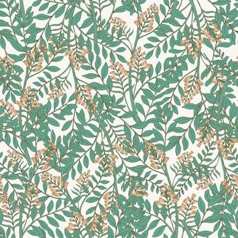 Elegante patrón transparente botánico con inflorescencias de acacia y hojas.
