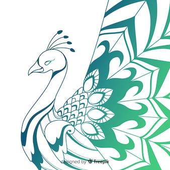 Elegante pavo real dibujado a mano