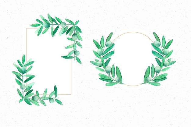 Elegantes marcos de oliva en acuarela.