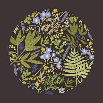 El elemento de diseño decorativo floral redondo, el telón de fondo o la decoración consistían en coloridas flores silvestres de pradera, hierbas con flores y helechos forestales sobre fondo negro. ilustración natural