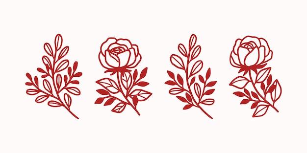 Elementos botánicos florales dibujados a mano
