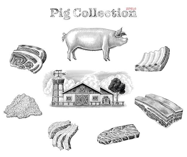 Elementos de cerdo en blanco y negro en estilo grabado