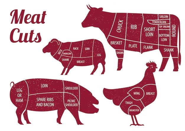 Elementos de cortes de carne