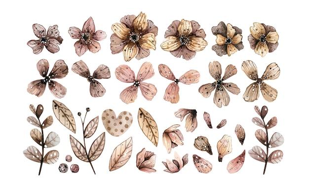 Elementos decorativos florales.
