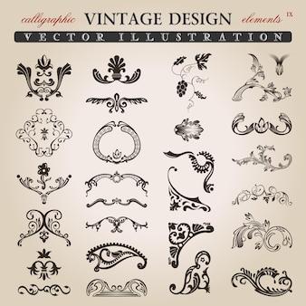 Elementos de diseño vintage caligráfico floral