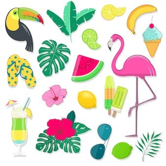 Elementos de fiesta de verano con aves tropicales, frutas, flores y cócteles.