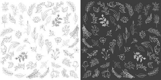 Elementos florales dibujados a mano