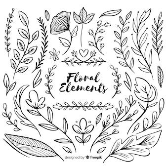 Elementos florales ornamentales dibujados a mano