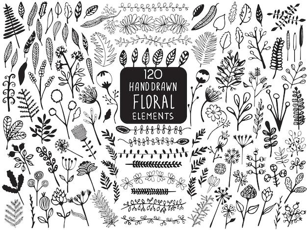 Elementos florales vintage dibujados a mano de flores, hojas, ramas, plantas decorativas para el fondo de diseño, invitaciones, tarjetas de felicitación, logotipos, desolladores, álbumes de recortes, etc.