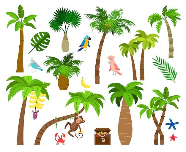 Elementos de la naturaleza de brasil