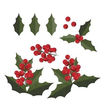 Elementos de la navidad con el conjunto de hojas y de bayas del acebo.