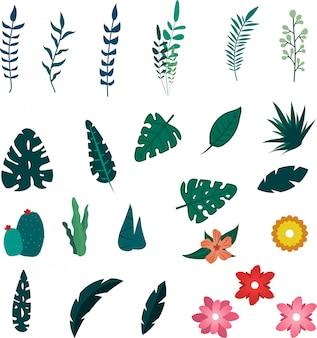 Elementos tropicales de flores y hojas de verano