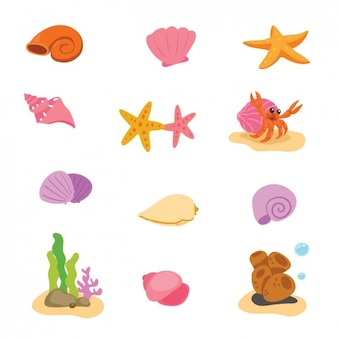Elementos de vida marina coloridos
