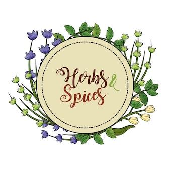 Emblema de hierbas y especias plantas y alimentos de órganos