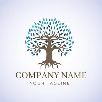 Empresa naturaleza árbol logo plantilla invierno hojas