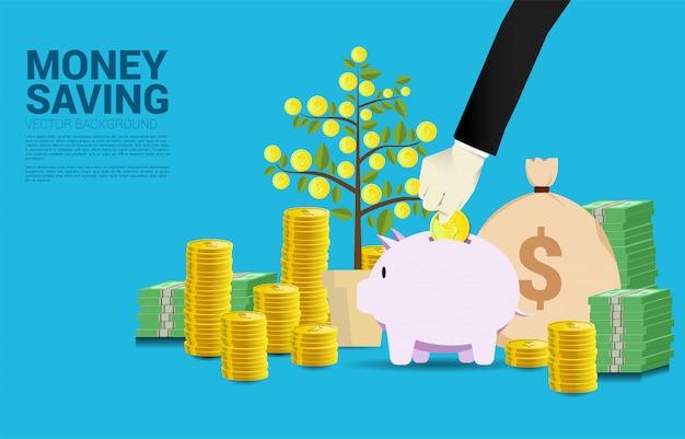 Empresario mano pone monedas en hucha con árbol de dinero de fondo de moneda