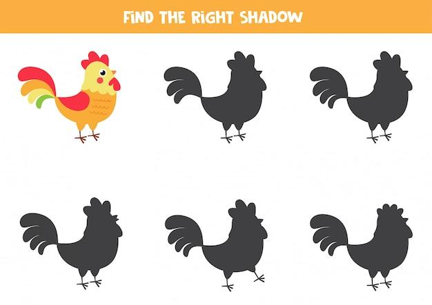 Encuentra la sombra correcta de gallo de dibujos animados lindo.