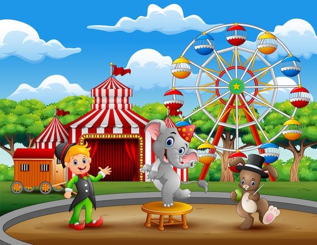 Entrenador de circo con elefante y conejo.
