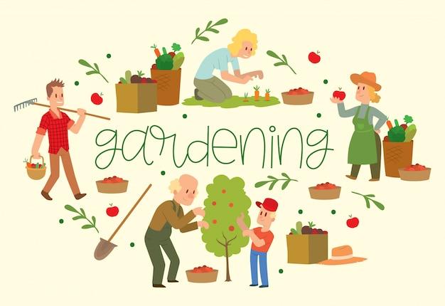 Equipos de jardinería para terrenos como rastrillos, palas, cubos. agricultor recogiendo frutas y verduras cosecha.
