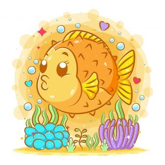 Erizo lindo pez amarillo con su gran cuerpo bajo el mar