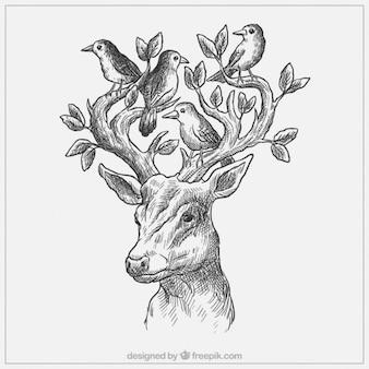 Esbozo de ciervo con pájaros y hojas